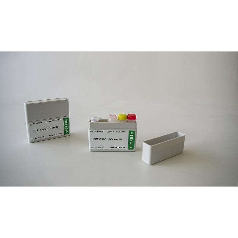 Grapevine leaves virus qPCR GRBV set 96* transport na suchym