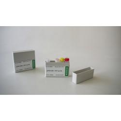 qPCR PLRV/PVY set 192 *Lieferung auf Trockeneis*