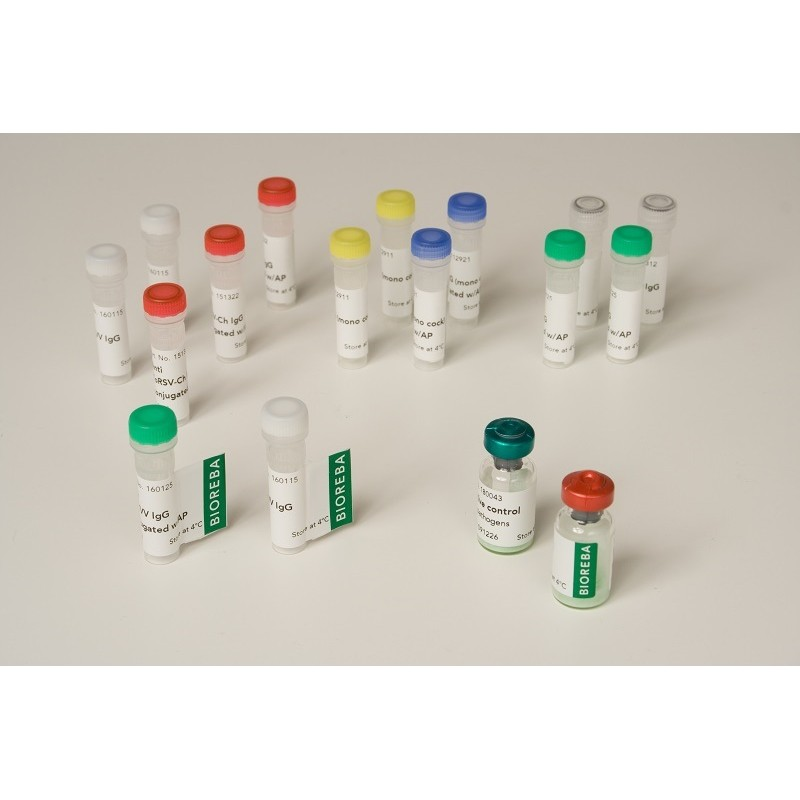 Pelargonium line pattern virus PLPV IgG 100 assays pack 0,025 ml