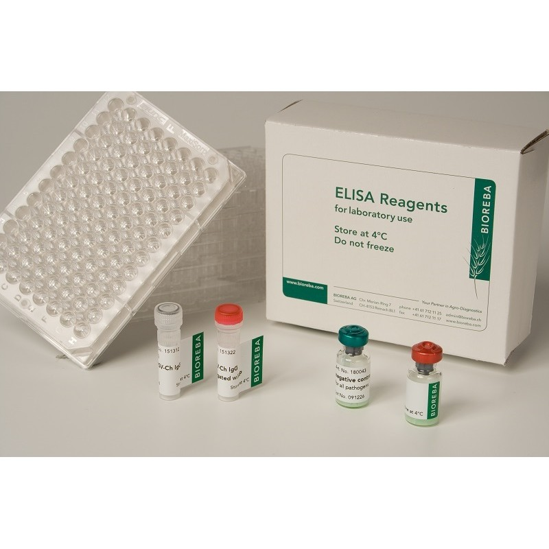 Grapevine leafroll assoc. virus 3 GLRaV-3 Reagent set 960