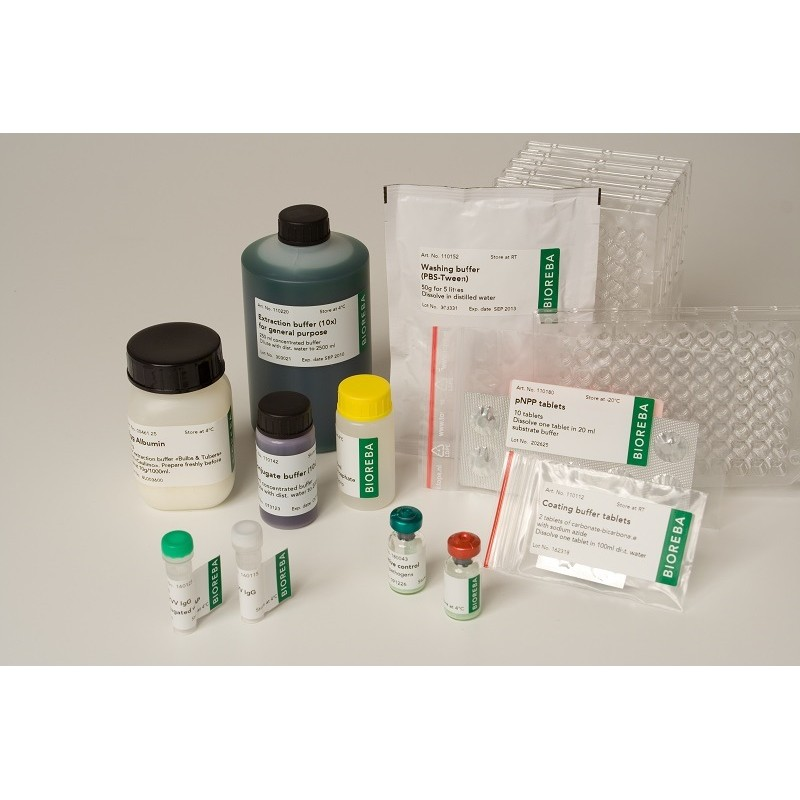 Pelargonium leaf curl virus PLCV Complete kit 960 assays pack 1