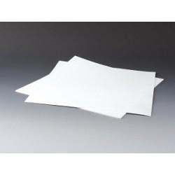 Filterplatte PTFE 5 µm 320 x 320 x 1 mm stark